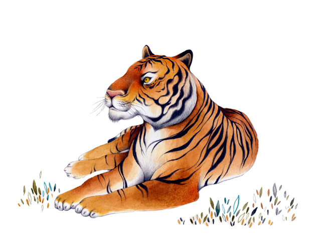 Jungle book_shere khan