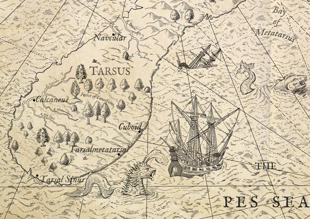 MAP-PES-A_DETAILb