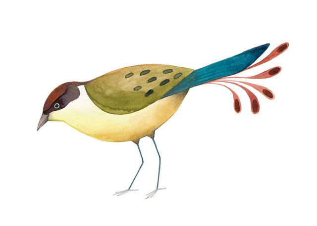 Bird exhibition_ Ester Garcia  (2)