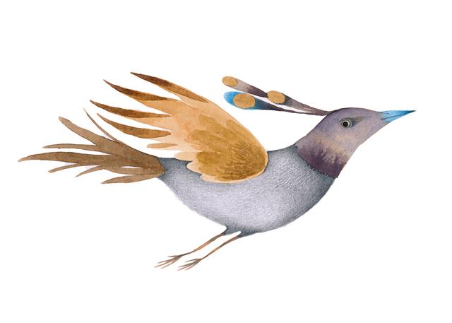 Bird exhibition_ Ester Garcia  (6)